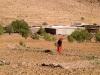 Berber woman in the fields